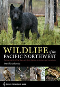 front cover of Wildlife of the Pacific Northwest